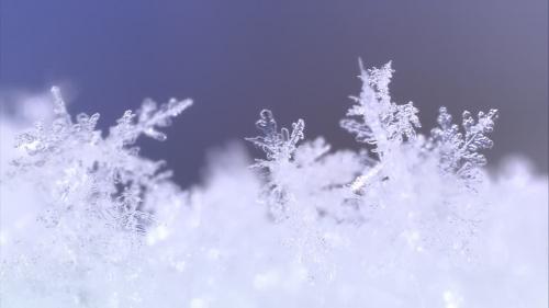944893238-cristal-de-glace-cristal-de-glace-neige.jpg