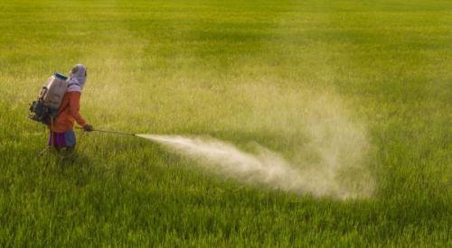 32172-pesticides_la_commission_europeenne_veut_a_nouveau_autoriser_le_glyphosate.jpg