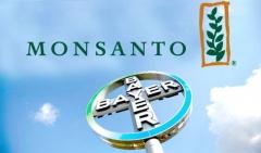 MonsantoBayer.jpg