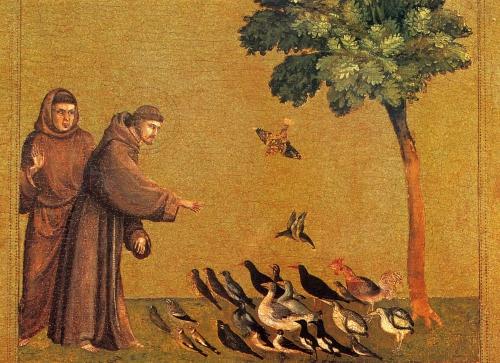 écologie, christianisme