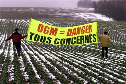monsanto,ogm,europe,commission européenne