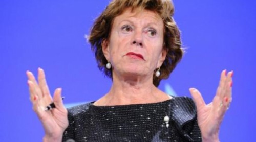 vp_neelie_kroes[1].jpg