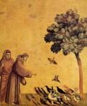 écologie,agriculture,christianisme,catholiques