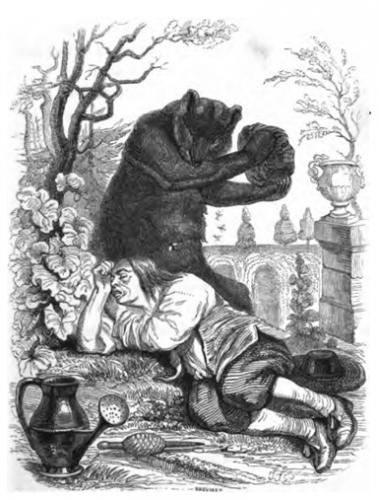 l-ours-et-l-amateur-des-jardins.png