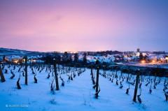 au-cœur-de-la-bourgogne-le-village-de-pommard-et-ses-vignes-sont-sous-la-neige.jpg