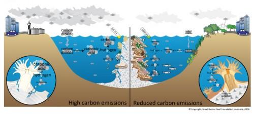 climat,océans,réchauffement