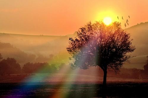 lever-soleil-campagne-423723[1].jpg