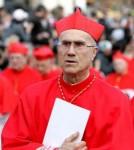 immigration,christianisme,catholiques,cardinal bertone,vatican,cardinal poupard