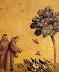 écologie,théologie